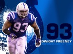 2010_wallpaper_freeney_rect